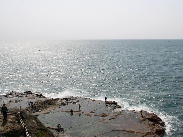 江ノ島の岩場