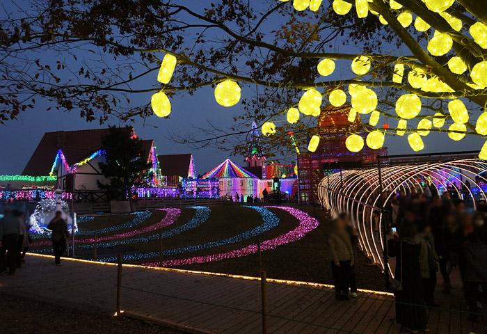 東京ドイツ村のイルミネーション2