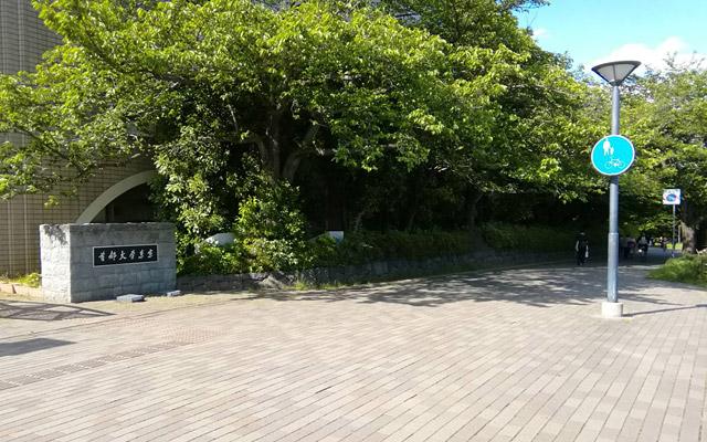 上ったところに、首都大学東京の入り口がありますが、入らずに右へ曲がります