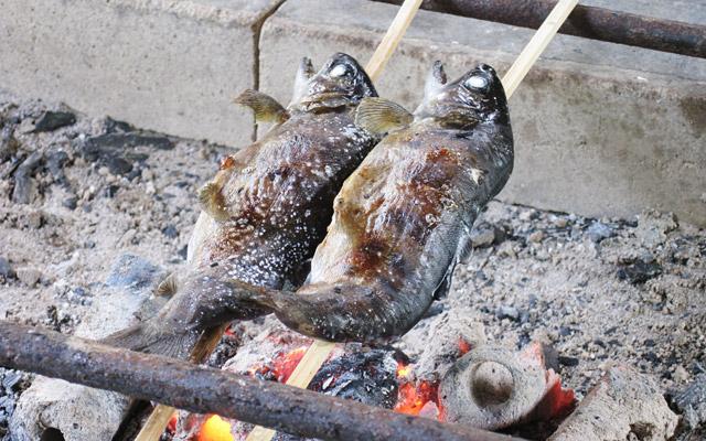 ヤマメを2匹釣って塩焼きにしてもらって食べることにしました
