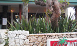 久々の江の島!展望台の近くのiL CHIANTI CAFEに行ってきました